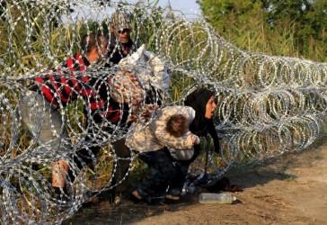 migrants barbelés bébés